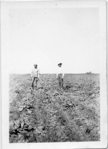 Photograph of Filipino farm workers standing in a field