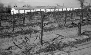 Farm Labor Camp