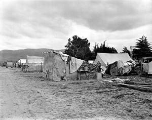 Pea picker's camp (1), California