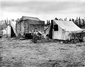 Pea Picker's Camp